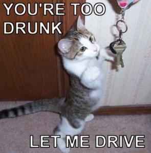 You're Too Drunk – let me drive