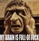 My brain is full of fuck