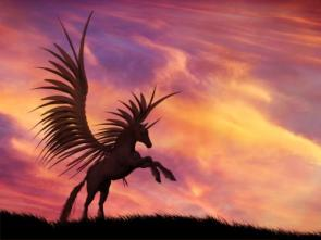 Unicorn Sunset