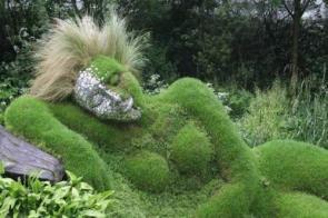 Sexy Bush
