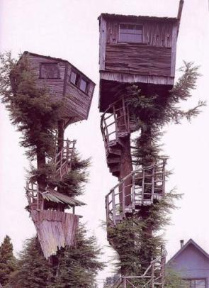 Red Neck Tree House