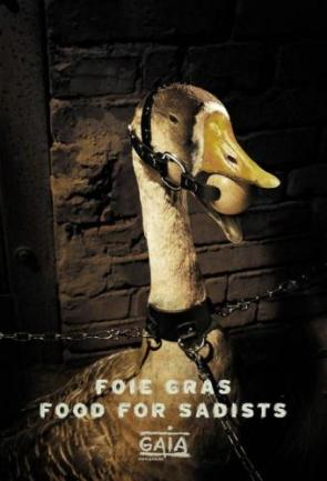 Foie Gras – Food For Sadists