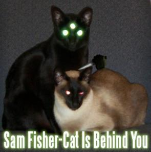 Sam Fisher-Cat Is Behind You