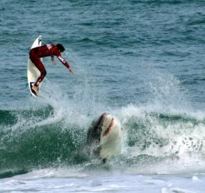 Shark Vs Surfer