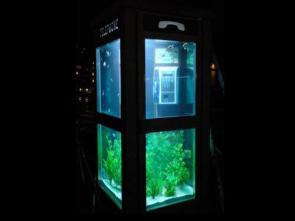 Telephone Booth Fish Tank
