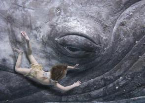 Whale Eye Swimmer