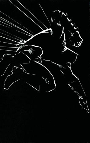Batman – The Dark Knight Outline