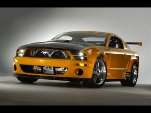 Awesome Mustang