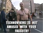 Technoviking is not amused with your faggotry