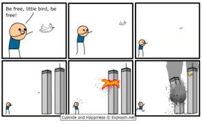 Terrorist Dove