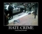 Hate Crime – it won't bring Irwin Back