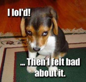 I lol'd!  …Then I felt bad about it.