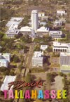Tallahassee Capitol Cock