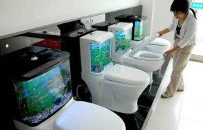 Fish Tank Toilets