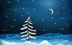 lone christmas tree