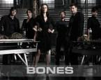 bone cast