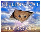 Ceiling cat approves