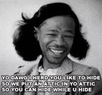 yo dawg I hrd you like to hide in your attic