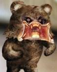 Pedo(tor) Bear