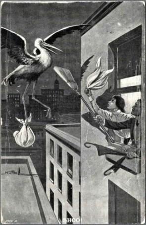 Shoo Stork