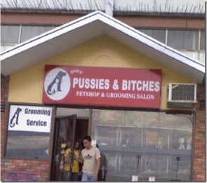 Pussies and Bitches