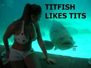 titfish likes tits