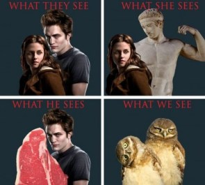 twilight – what we see
