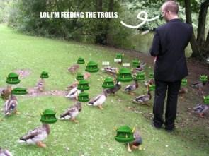 feeding the trolls