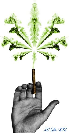 Legalize!