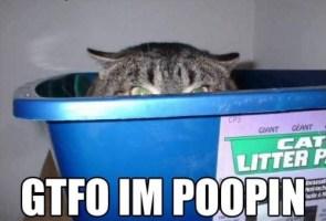 gtfo im poopin