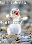 i am the almighty – fear the fuzzy – FEAR IT
