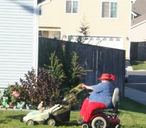 pimping lawn care service