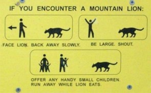 what do to if you encounter a mountain lion
