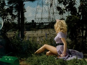 scarlett johansson is fenced in