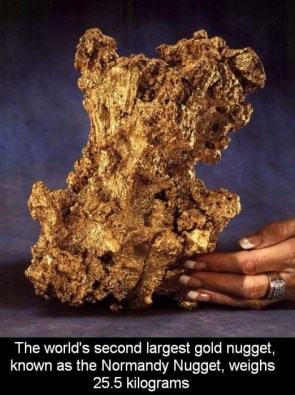 the world's second largest gold nugget