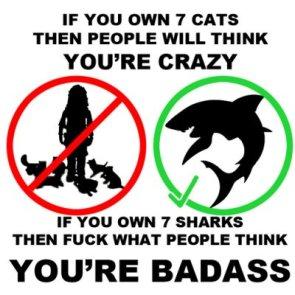 Crazy or Badass?