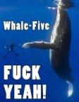 Whale-Five – FUCK YEAH