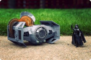 darth vader's tie fighter invaded by squirrel