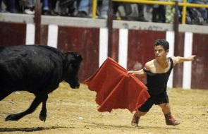 midget bull fighter