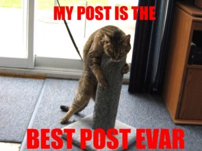 my post is the best post evar