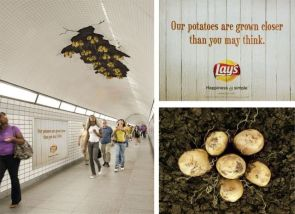 our potatoes are grown closer than you may think – lays