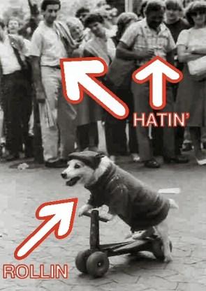 rollin – hatin