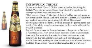 the buffalo theory