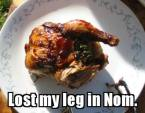 lost my leg in NOM