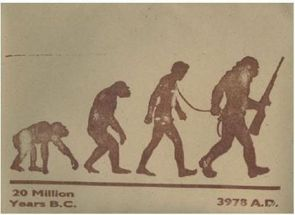 the evolution of humanity