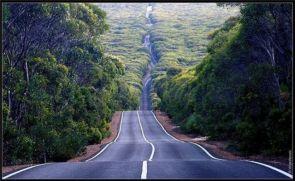 wavey road