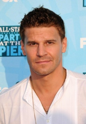 David Boreanaz in white