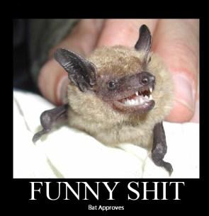 funny shit – bat approves