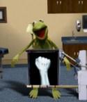 kermit's xray