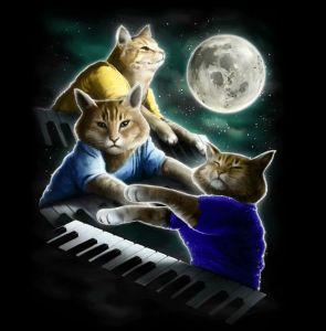 play them off cat x3